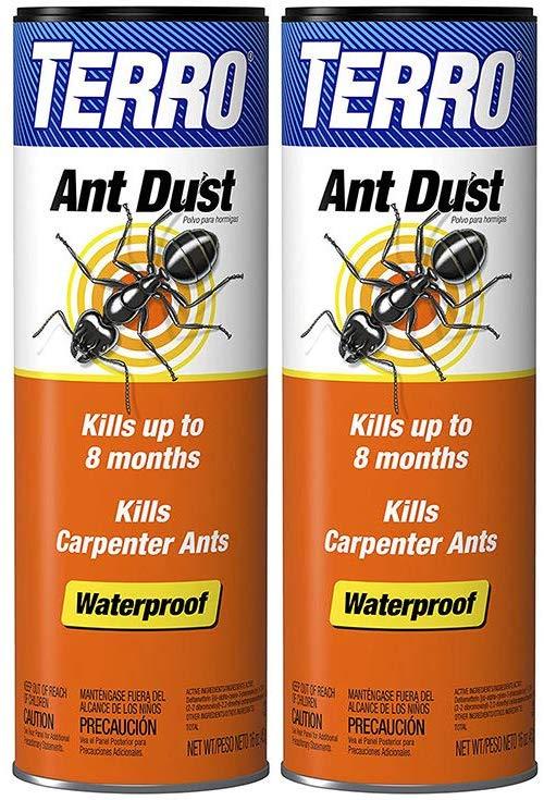 Best Spray For Carpenter Ants The Pest Advice