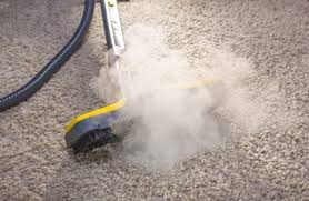 https://upload.wikimedia.org/wikipedia/commons/d/d1/Carpet_Steam_Cleaning_Services.jpg