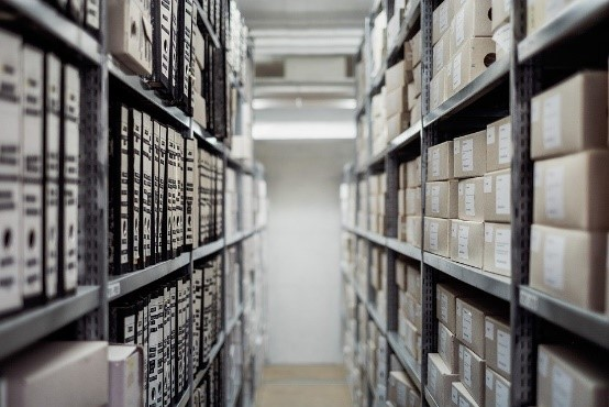 Archives are ideal hiding place for bed bugs